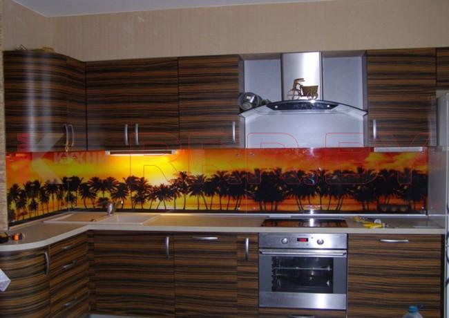 Кухня со скинали №121